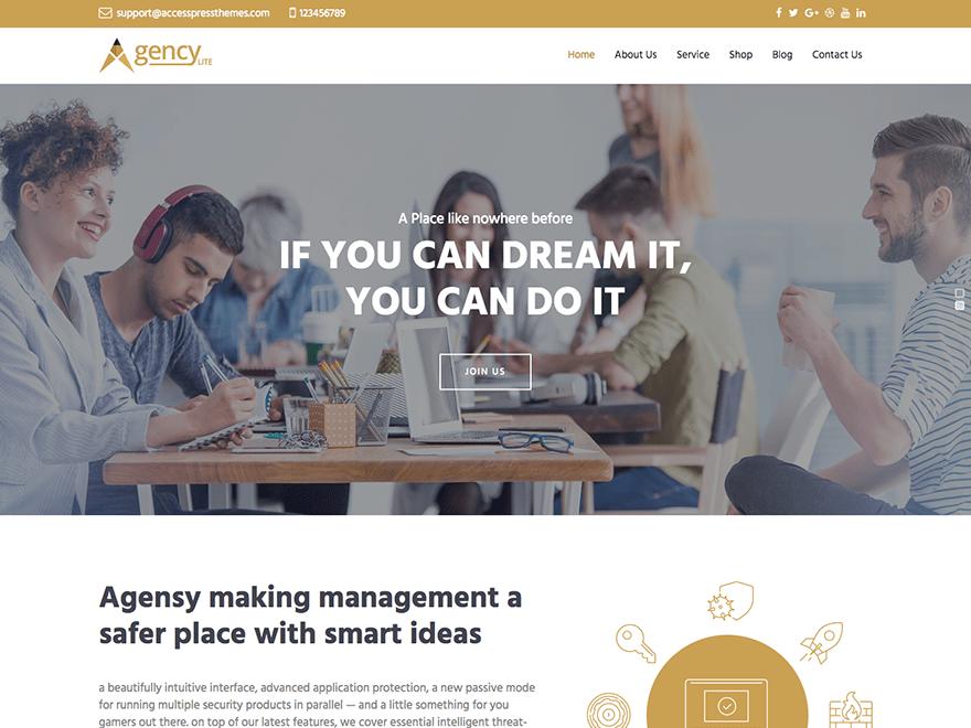 Download Agency Lite 1.0.7 – Free WordPress Theme