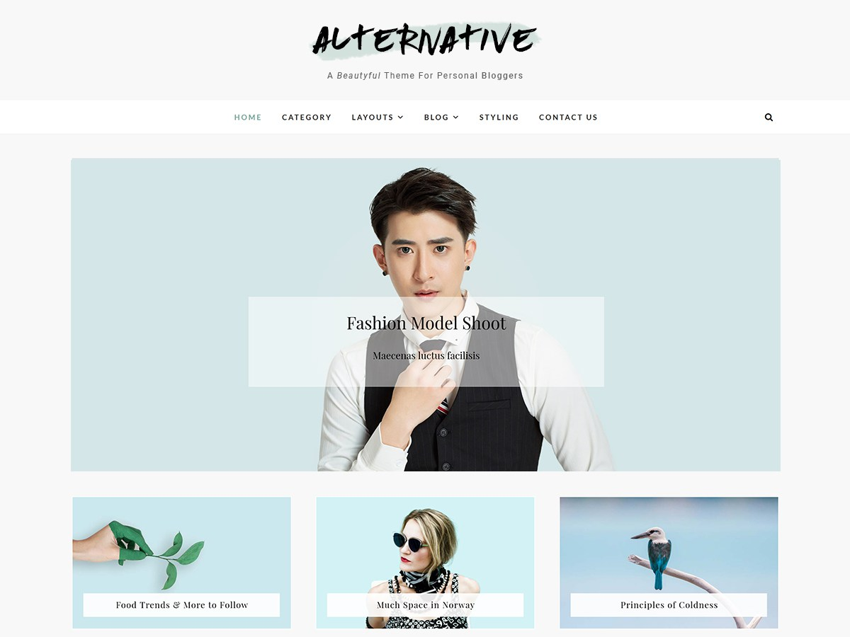 Download Alternative 1.0.4 – Free WordPress Theme