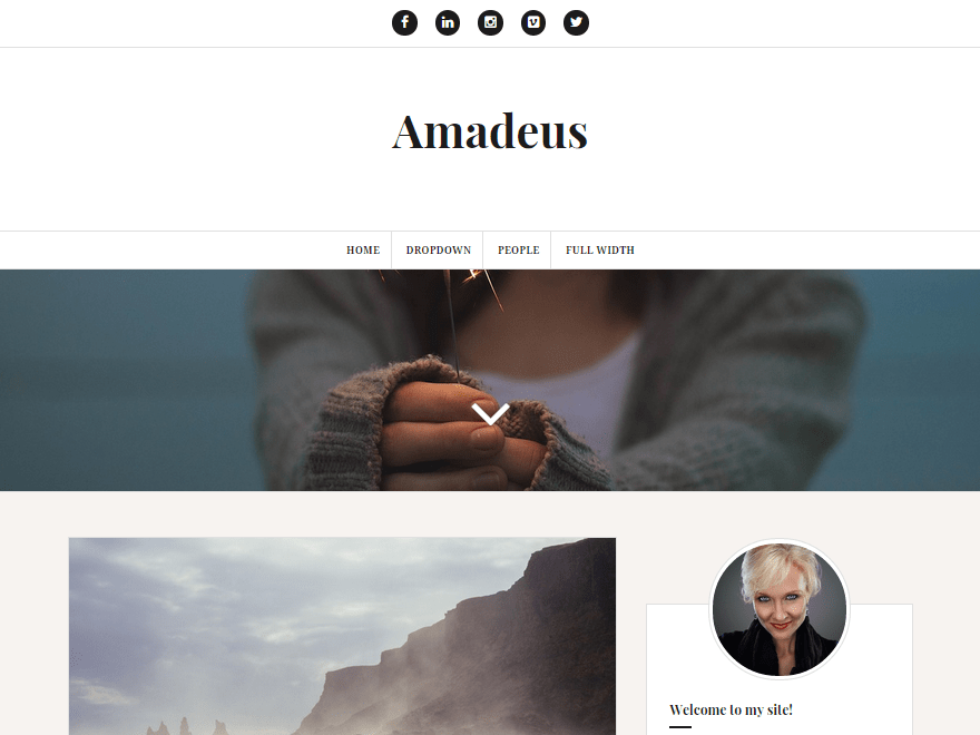Download Amadeus 2.0.7 – Free WordPress Theme