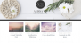 Download Anissa 0.0.5 – Free WordPress Theme