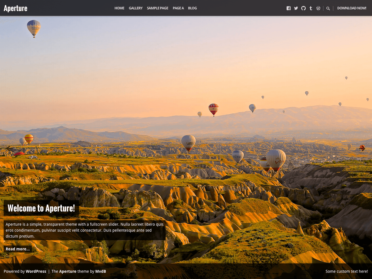 Download Aperture 1.1.8 – Free WordPress Theme