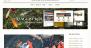Download Asagi 1.0.8 – Free WordPress Theme