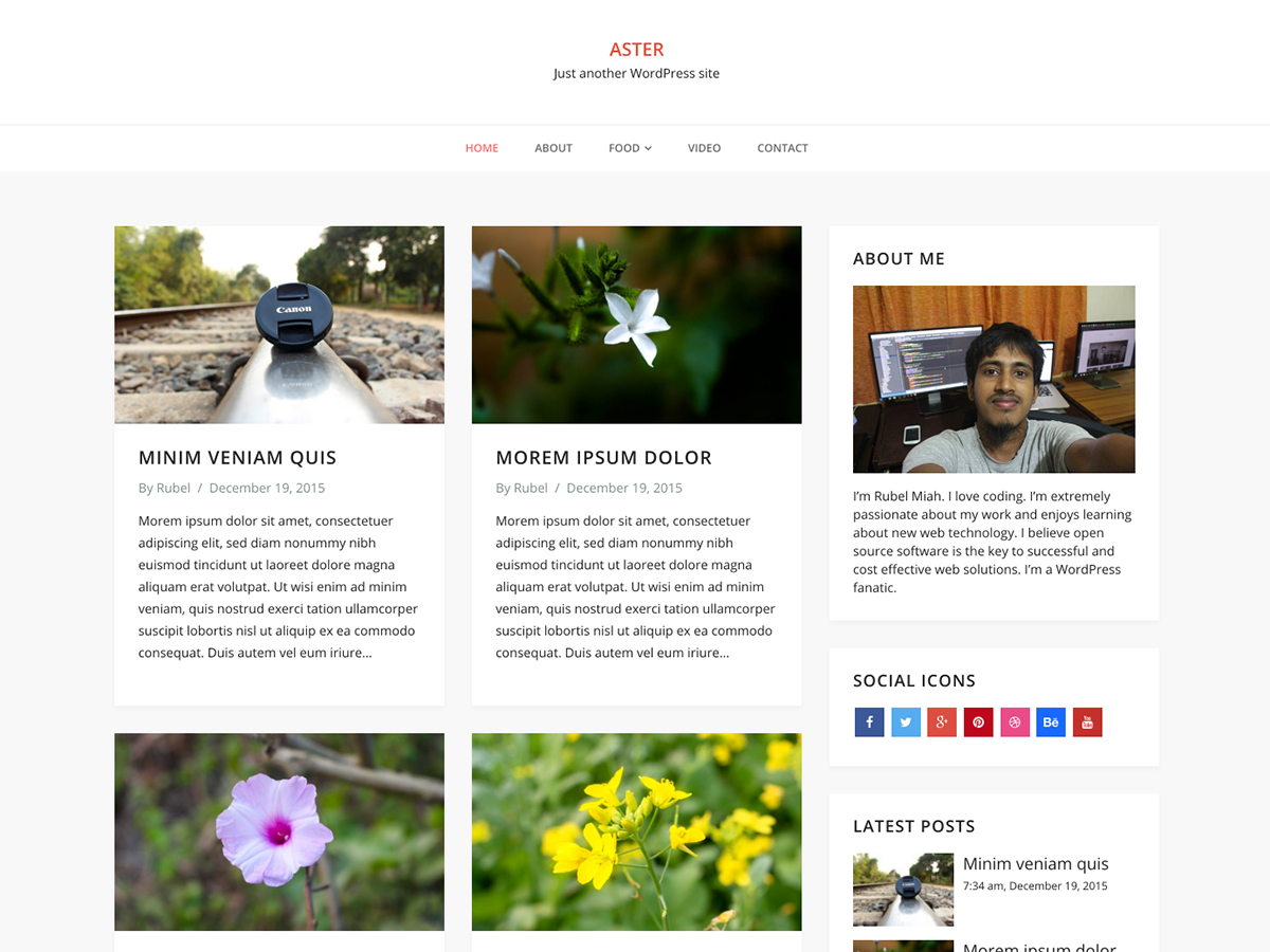 Download Aster 1.5.1 – Free WordPress Theme