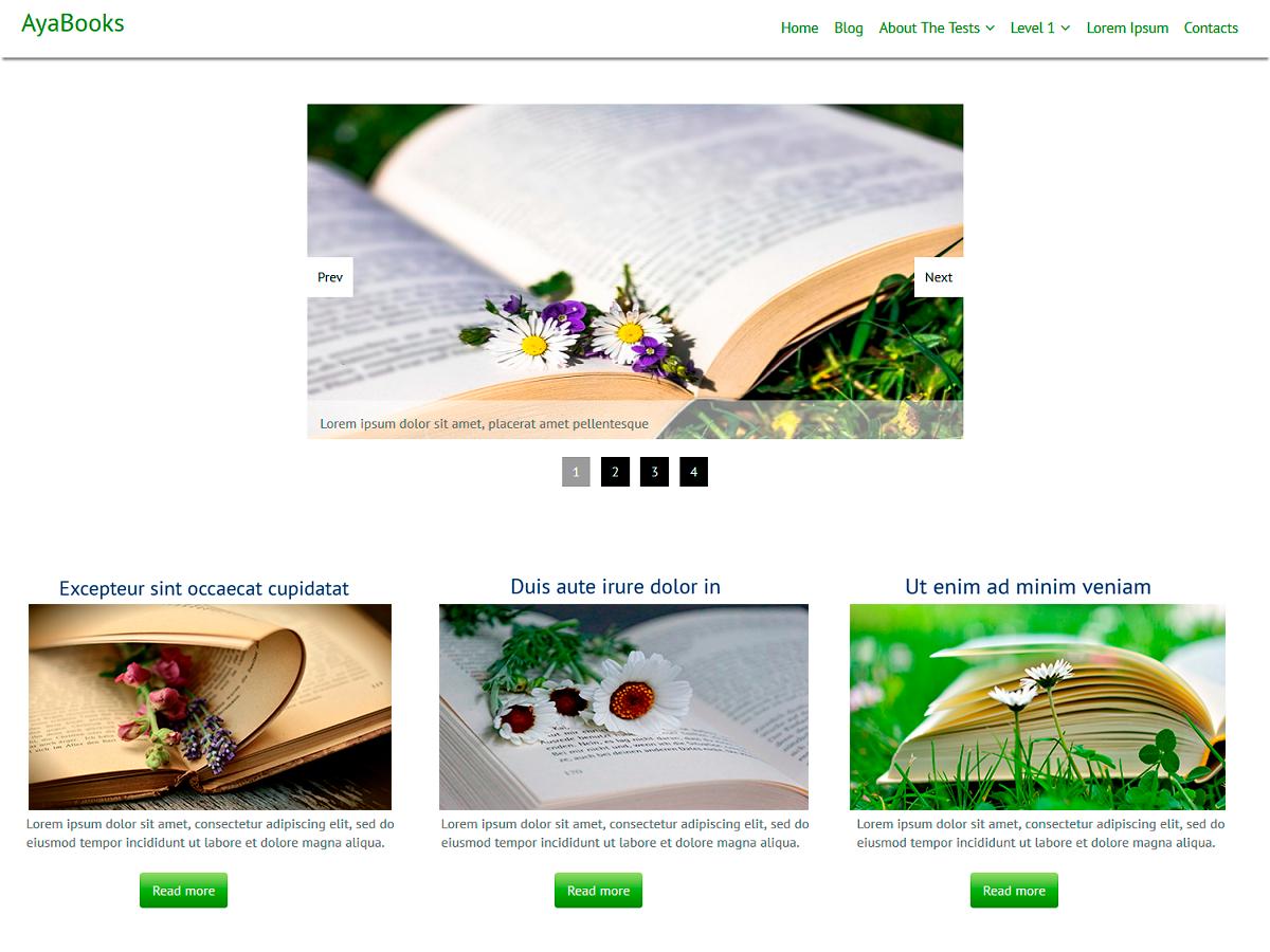 Download AyaBooks 1.0.3 – Free WordPress Theme