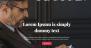 Download Bazzinga 1.0.5 – Free WordPress Theme