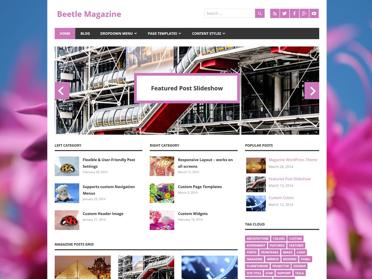 Download Beetle 1.4.1 – Free WordPress Theme