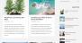 Download Best Minimalist 1.0.4 – Free WordPress Theme