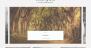 Download Black Jane 1.0.1 – Free WordPress Theme