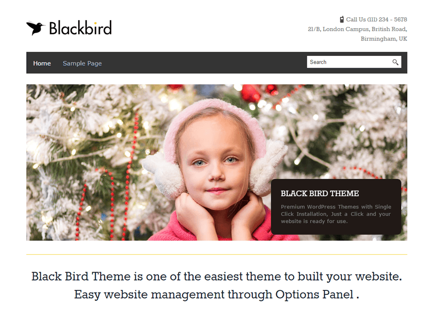 Download BlackBird 1.2.9 – Free WordPress Theme