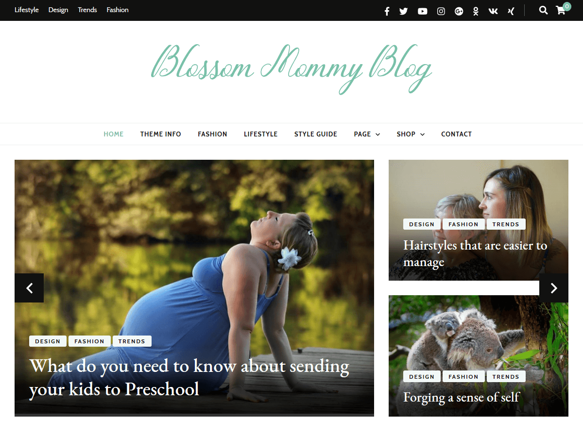 Download Blossom Mommy Blog 1.0.0 – Free WordPress Theme