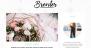Download Breviter 1.1.2 – Free WordPress Theme