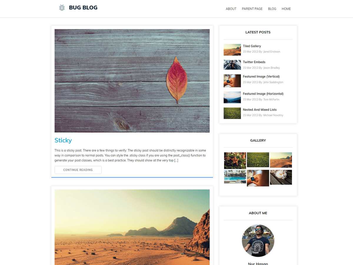Download Bug Blog 1.0.14 – Free WordPress Theme