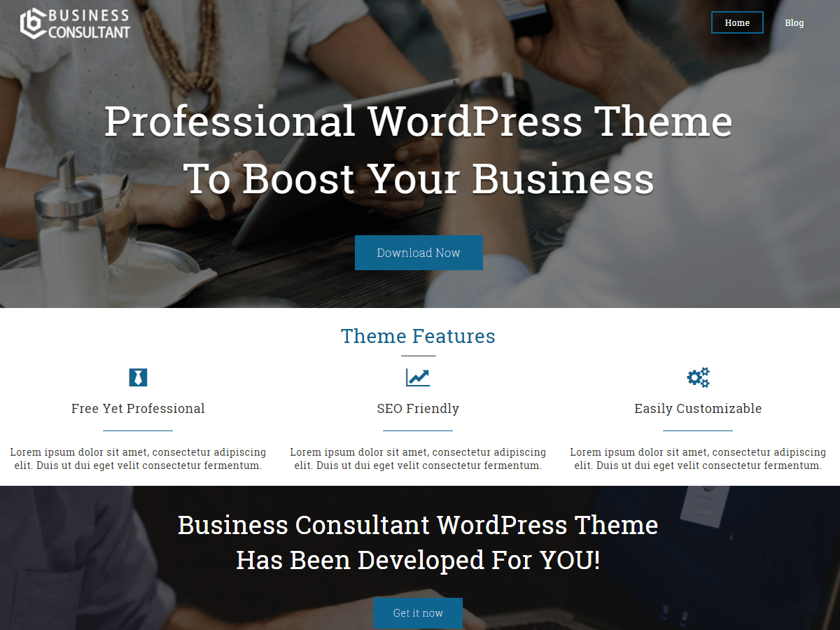 Download Business Consultant 1.1.9 – Free WordPress Theme