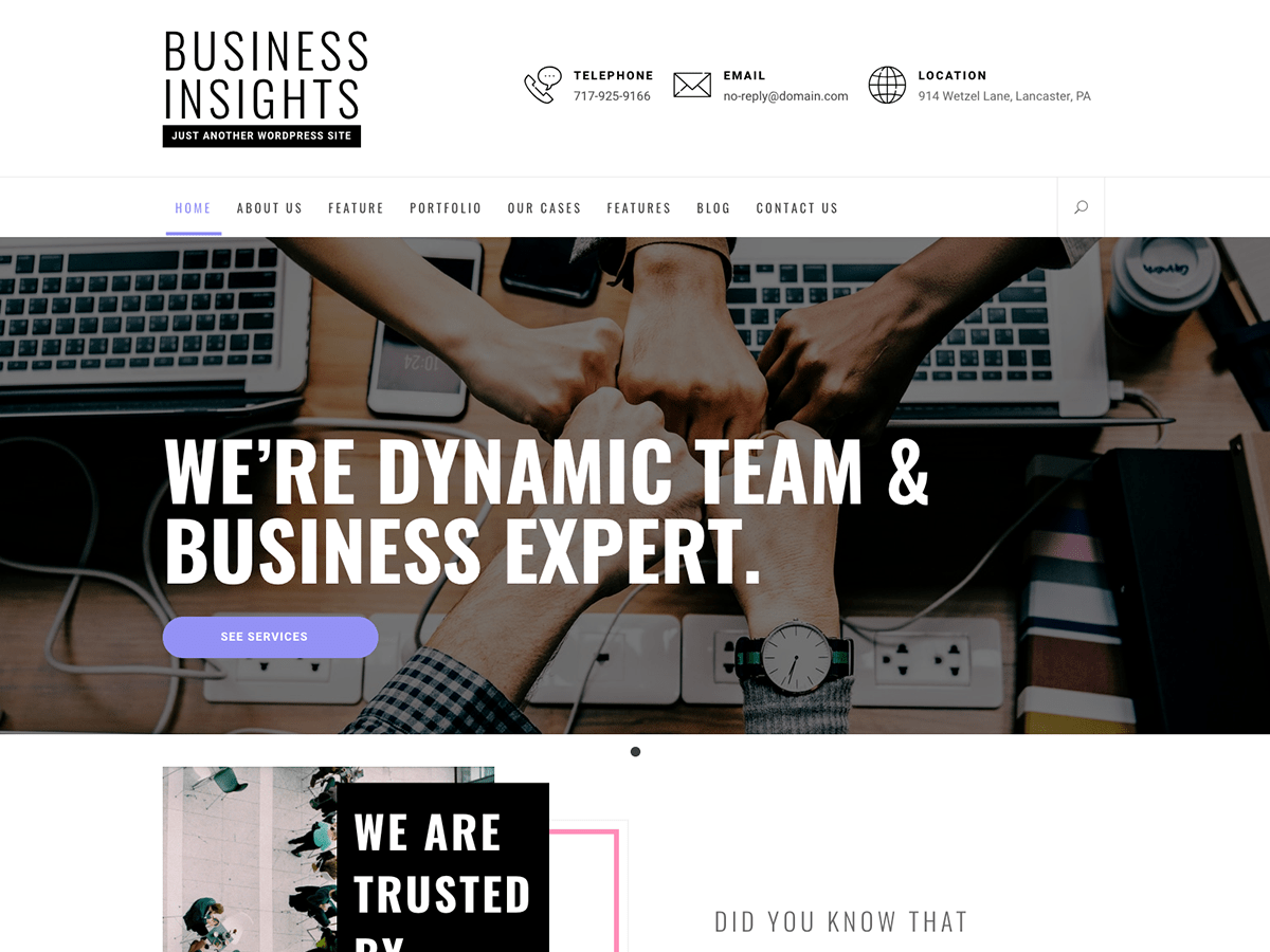 Download Business Insights 1.0.3 – Free WordPress Theme