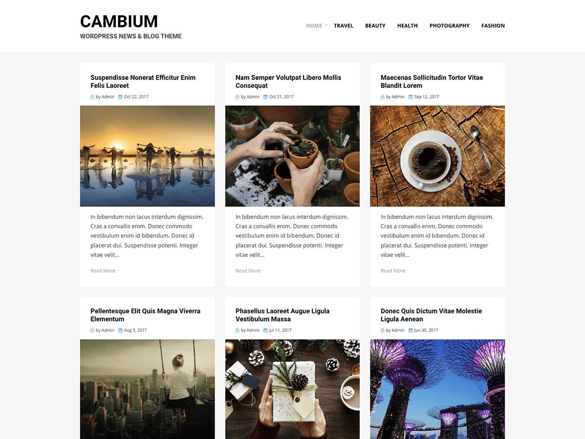 Download Cambium 0.1.7 – Free WordPress Theme