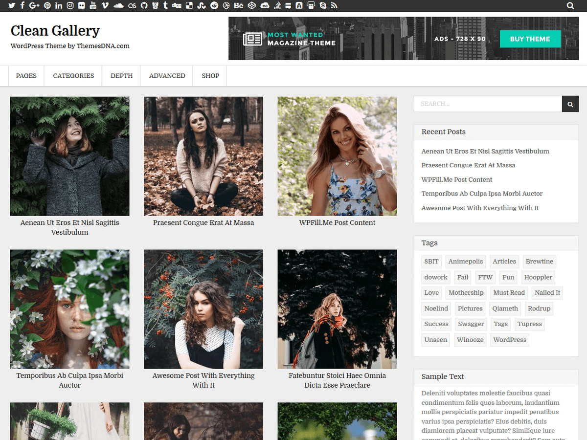 Download Clean Gallery 1.0.5 – Free WordPress Theme