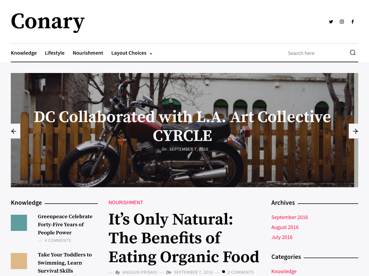 Download Conary 1.0.1 – Free WordPress Theme