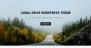 Download Coral Drive 1.0.8 – Free WordPress Theme