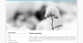 Download Coral Snowy 1.0.5 – Free WordPress Theme