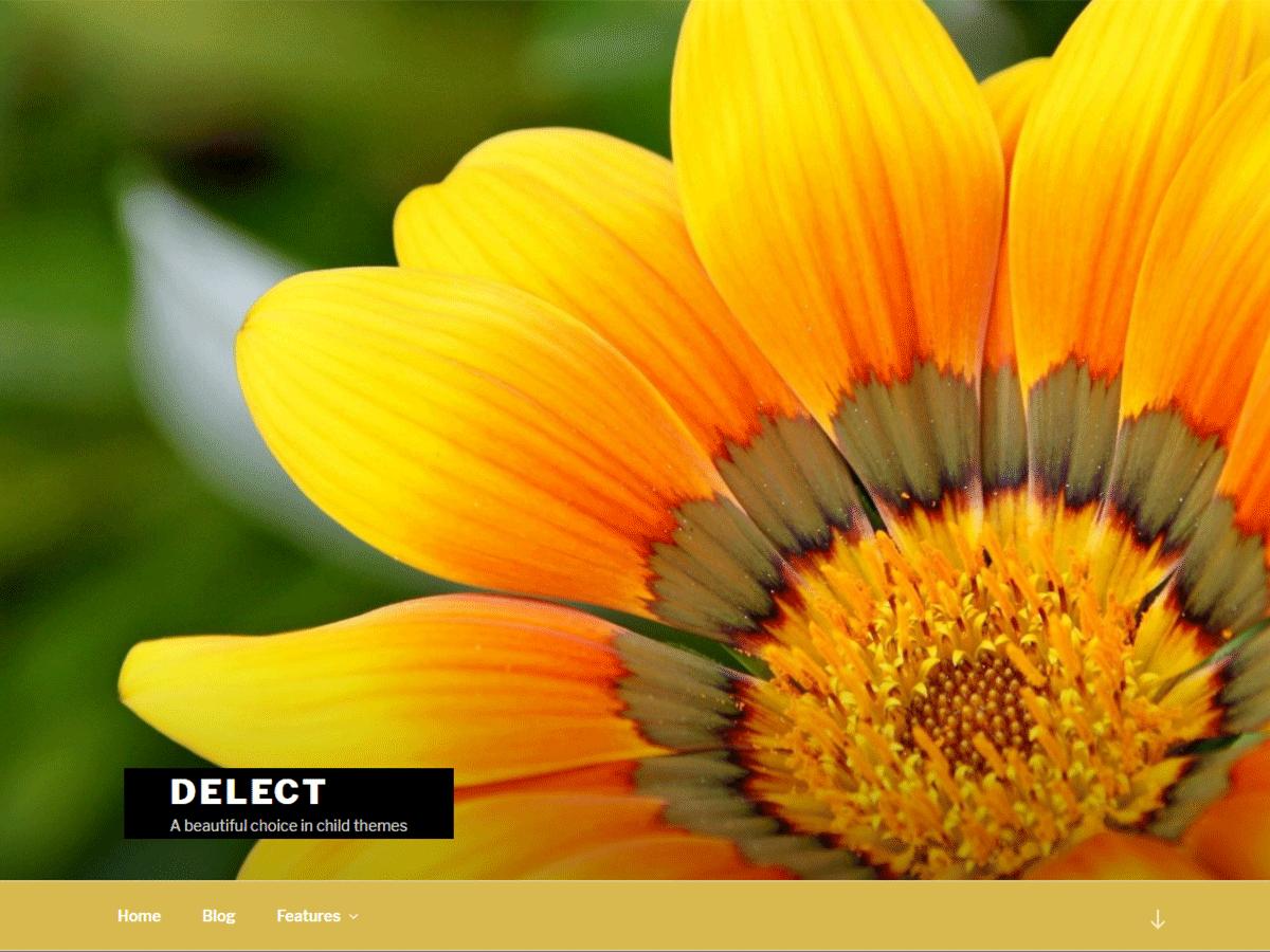 Download Delect 1.0.2 – Free WordPress Theme