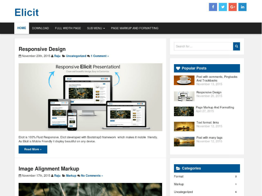 Download Elicit 1.2.4 – Free WordPress Theme