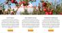 Download FarmLight 1.0.5 – Free WordPress Theme