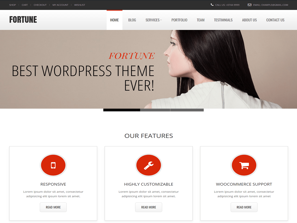 Download Fortune 1.8 – Free WordPress Theme