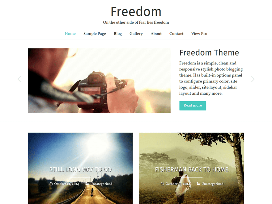 Download Freedom 1.1.6 – Free WordPress Theme