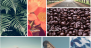 Download Gallery – Photo Gallery – Image Gallery 1.3.1 – Free WordPress Plugin