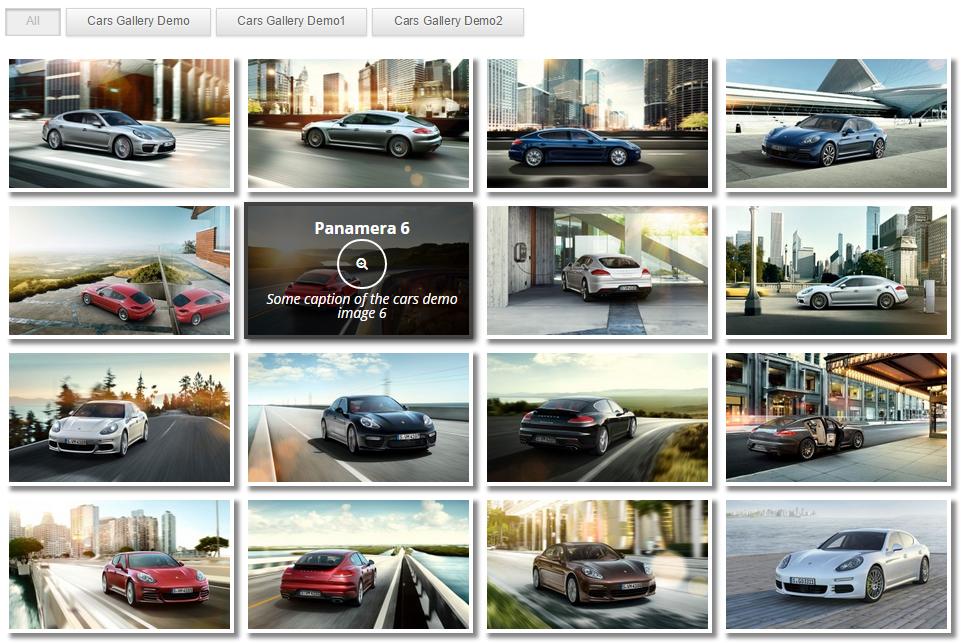 Download Gallery by Robo – Responsive Image Photo Gallery 2.8.10 – Free WordPress Plugin
