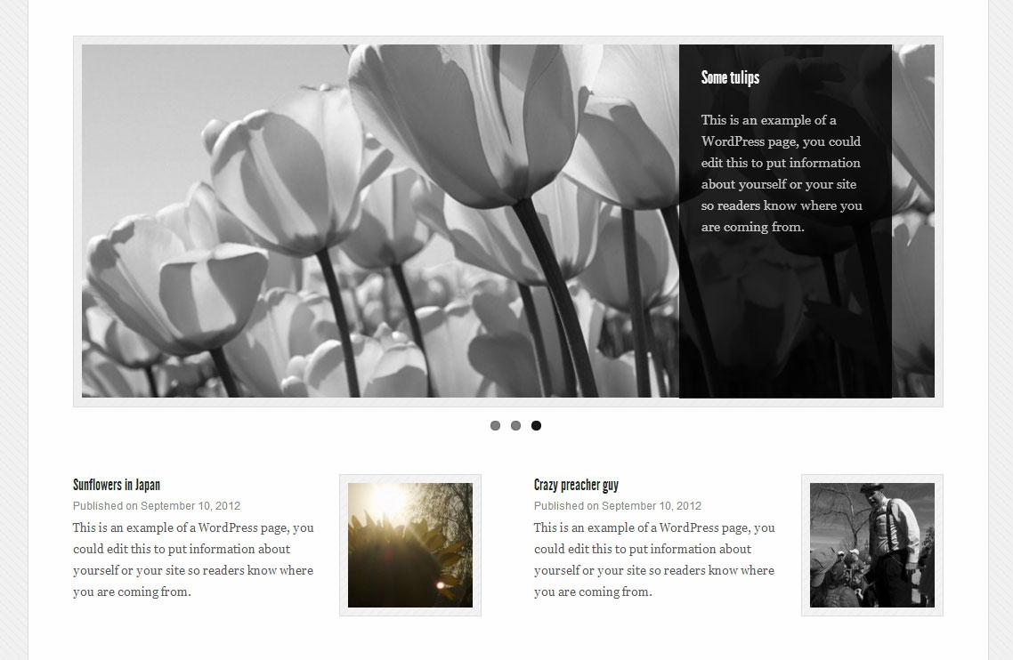 Download Get the Image 1.1.0 – Free WordPress Plugin