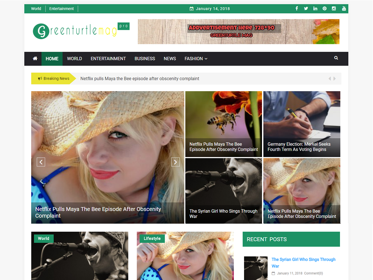 Download Greenturtle Mag 1.2.4 – Free WordPress Theme