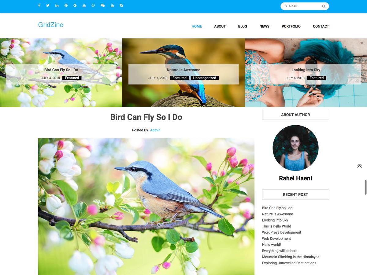 Download Gridzine 1.0.1 – Free WordPress Theme