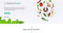 Download Herbal Lite 1.2 – Free WordPress Theme