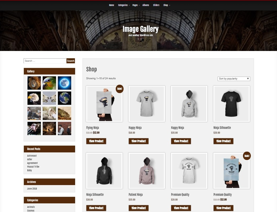 Download Image Gallery 1.2.0 – Free WordPress Theme