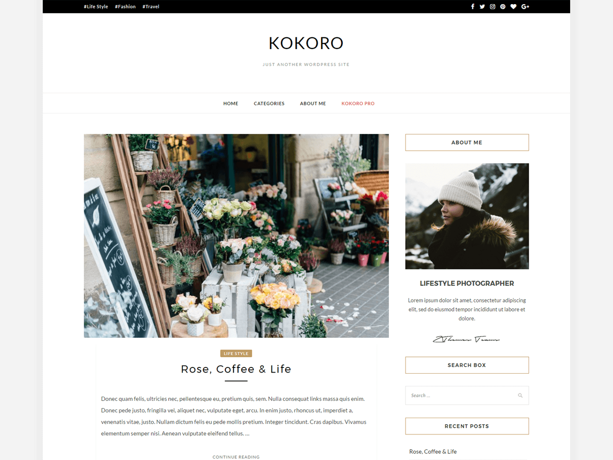 Download Kokoro 1.0.6 – Free WordPress Theme