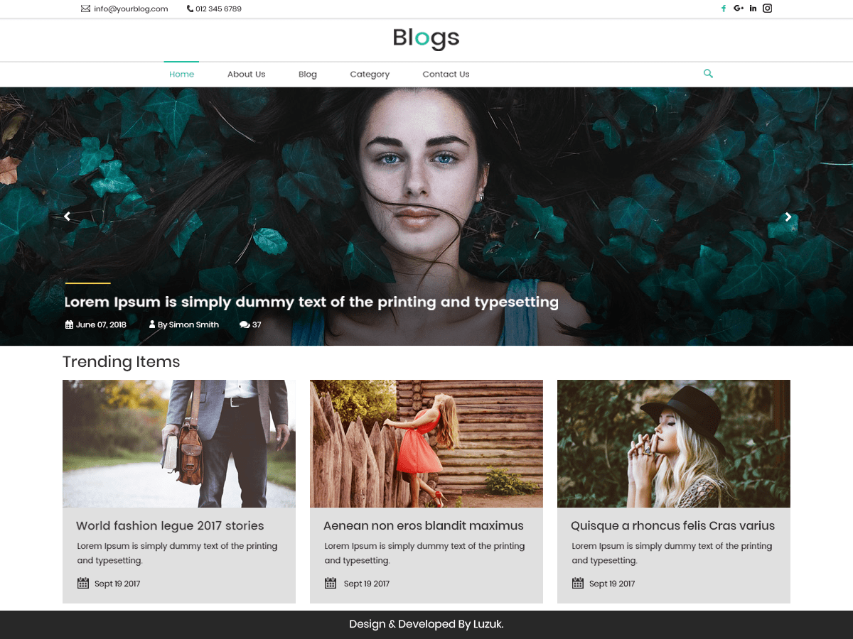 Download LZ Real Blog 0.3 – Free WordPress Theme