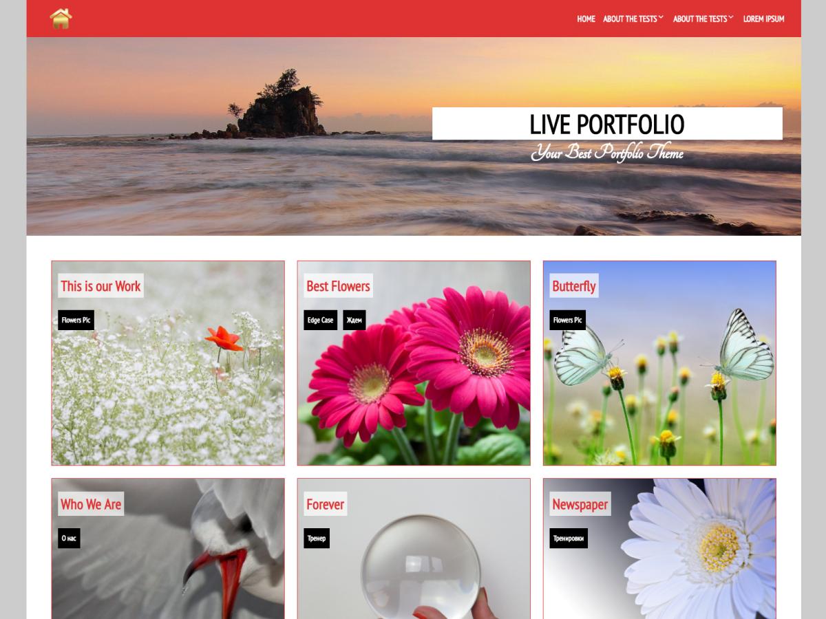 Download Live Portfolio 1.0.3 – Free WordPress Theme