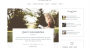 Download Lucienne 0.0.6 – Free WordPress Theme