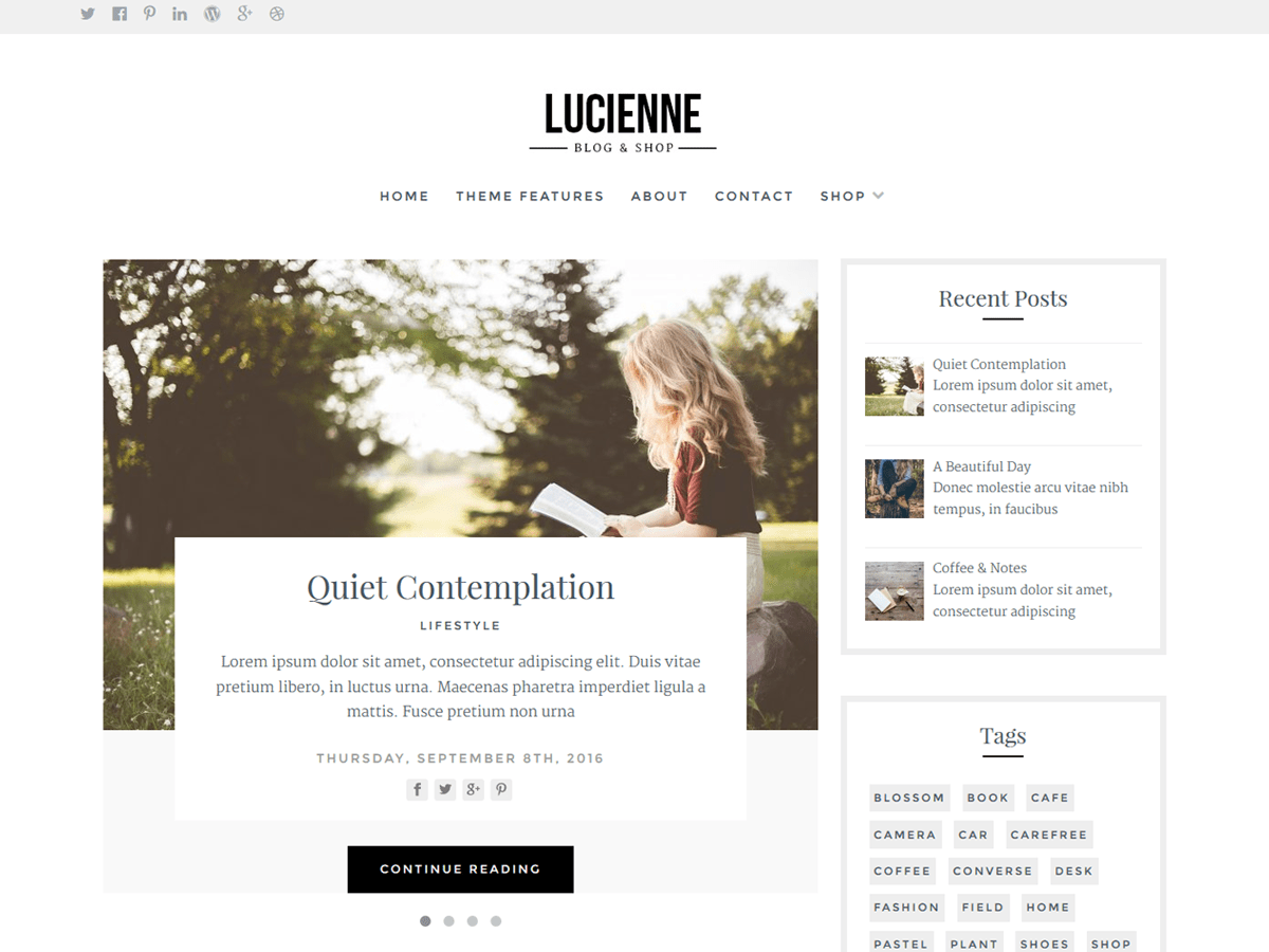 Download Lucienne 0.0.6 – Free WordPress Theme
