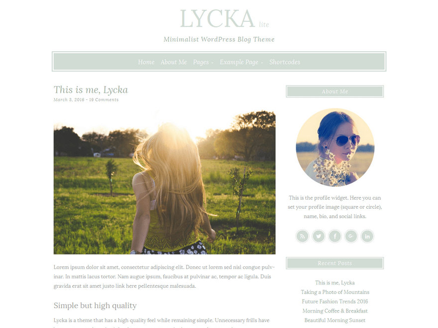 Download Lycka lite 1.0.5 – Free WordPress Theme