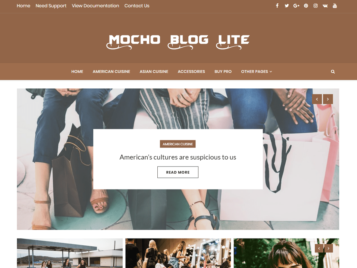 Download Mocho Lite 1.0.1 – Free WordPress Theme