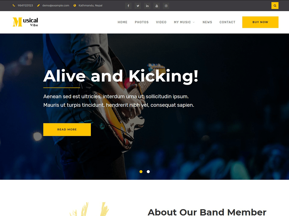 Download Musical Vibe 1.0.1 – Free WordPress Theme