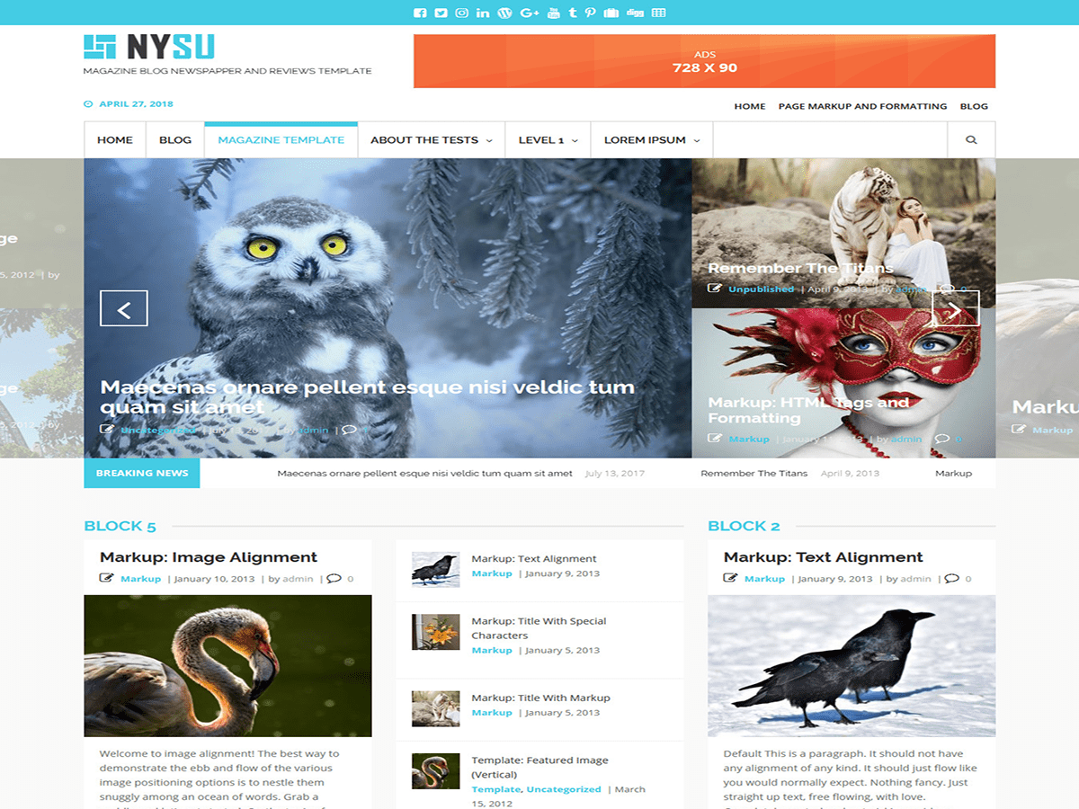 Download NYSU Magazine 1.1.0 – Free WordPress Theme
