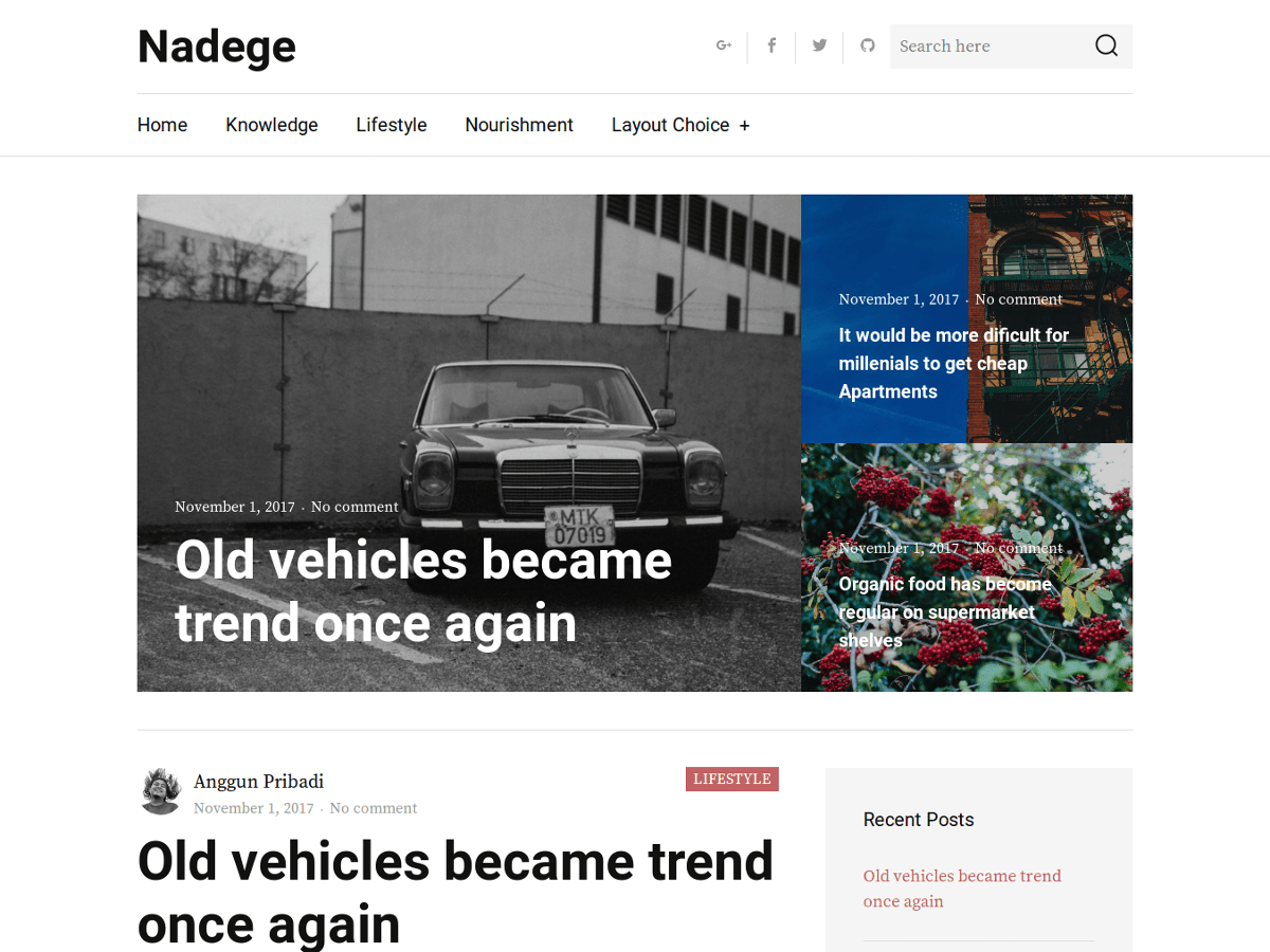 Download Nadege 1.0.1 – Free WordPress Theme