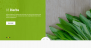 Download Natural Herbs Lite 1.1 – Free WordPress Theme