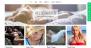 Download Nikkon 1.1.01 – Free WordPress Theme