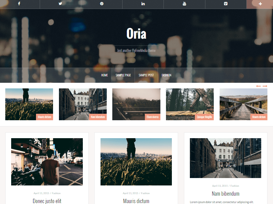 Download Oria 1.09 – Free WordPress Theme