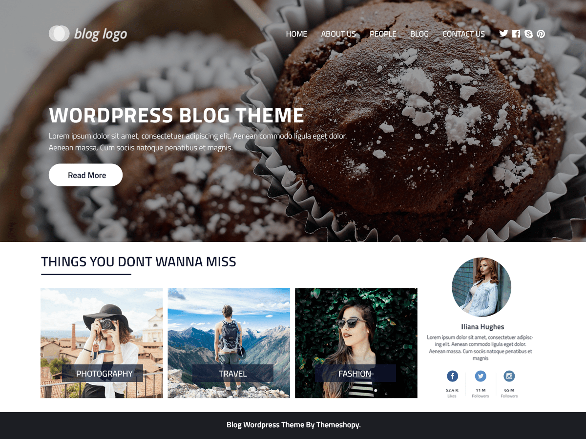 Download Perfect Blog 0.3.3 – Free WordPress Theme