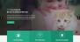 Download Petcare Lite 1.1 – Free WordPress Theme